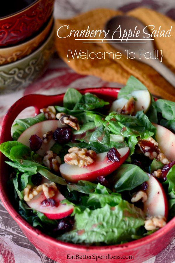 This Cranberry Apple Walnut Salad is my new favorite! So delicious and only takes a few ingredients. I love adding healthy recipes to our meal plan and this one is here to stay.